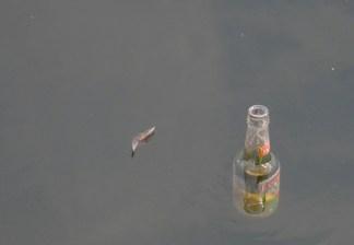 Floating Bottle
