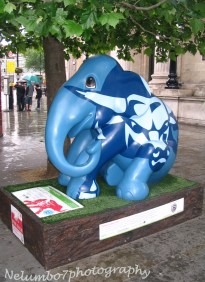 Elephant Parade 005
