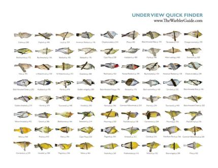 Underview Quick Guide
