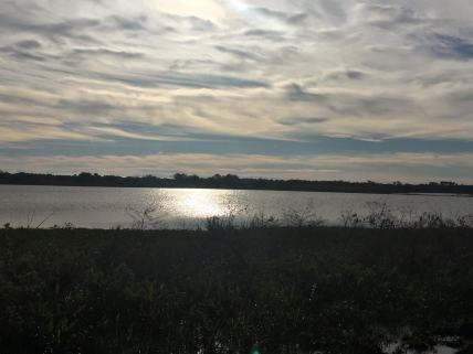 Blue Heron Wetlands - Tim Schreckengost - 24401792731_28ccacde83_k