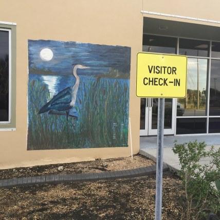 Blue Heron Wetlands - Tim Schreckengost - 24401850071_7eceda08dd_k