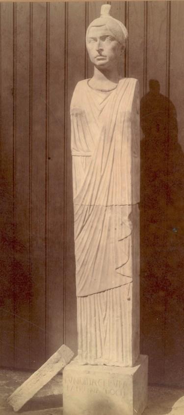NCM 1890-1357-5 Fundilia Rufa 2