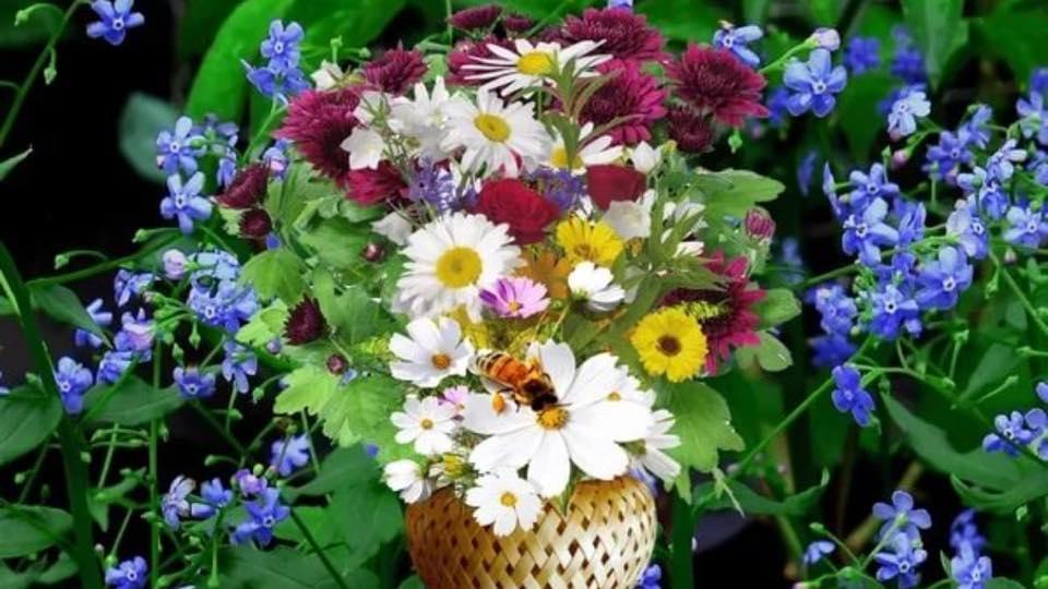 flowers_to_povyshev_from_rusanova.jpg