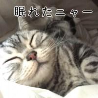 3Dエアー枕