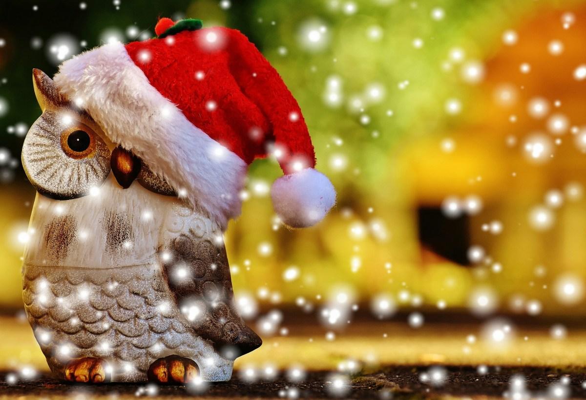 【イベント告知】12月3日(日)/12月12日(火) 横浜で2か所 イベント&出展のご案内