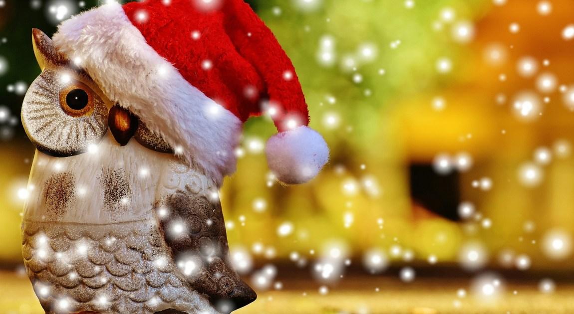 クリスマス サンタ フクロウ