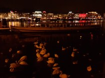We found a flock of swans while admiring the lighted Zurich