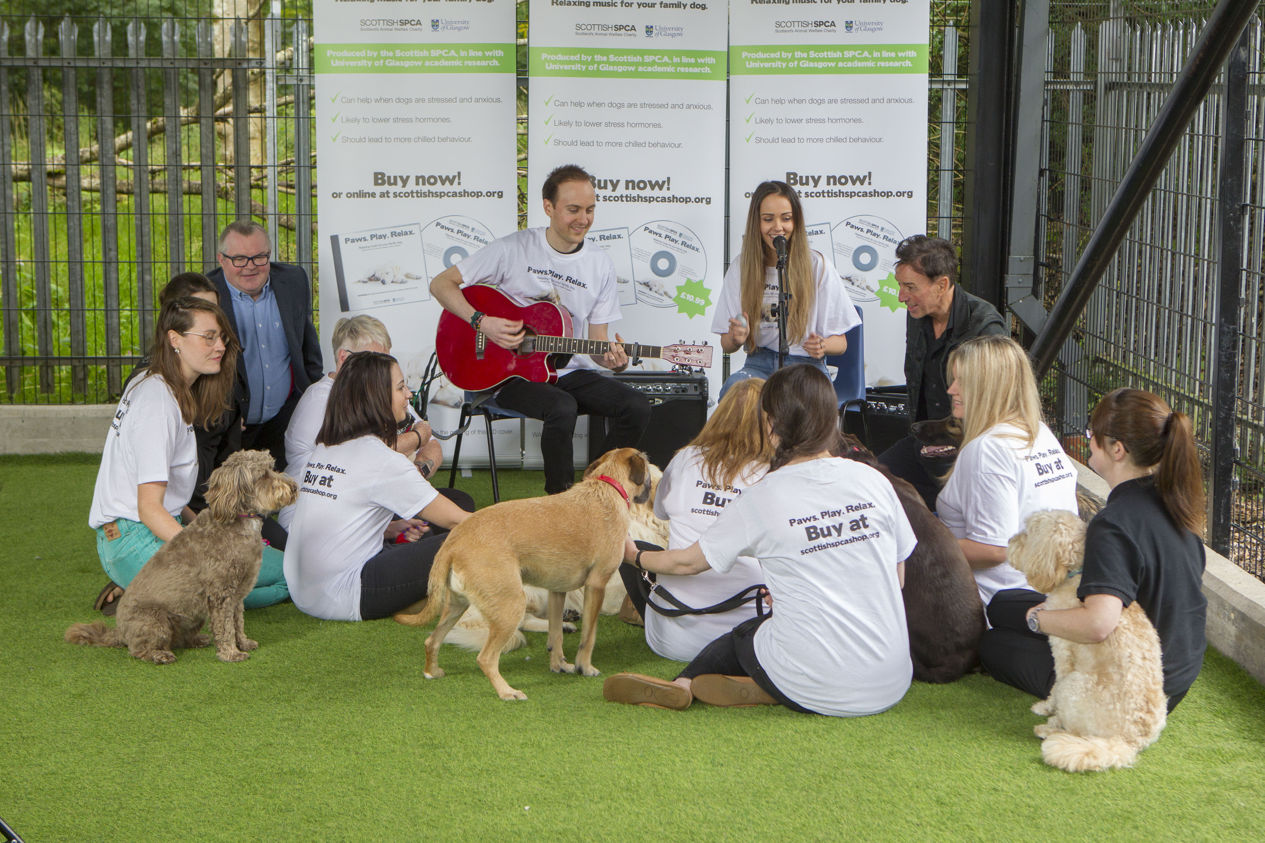Due To High Demand The Scottish Spca Has Made Their Al Paws Play Relax Available To Download And Stream Through Spotify Itunes Google Play And