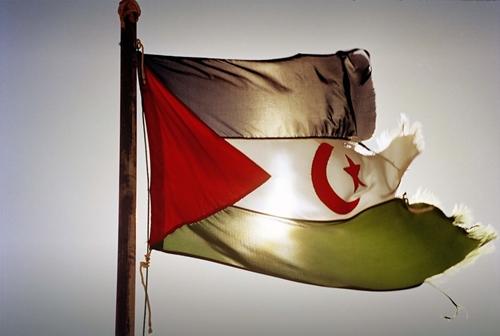 saharawi_flag_5001