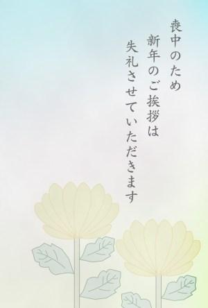 kiku1_1