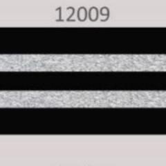 OAKI-DOKI - Galloon Trim Coll.2 | 30mm | zwart met 2 zilveren lurex strepen *kleur 12009