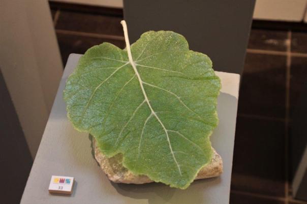 Pate de verre vijgenblad