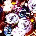 薔薇(3パターン)