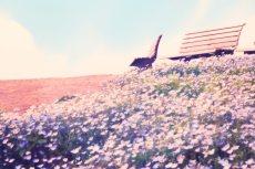 scenery313-3