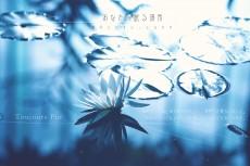 flower643-chisatotter