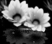 repeat-flower015