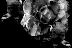 norepeat-flower031_3