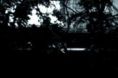 scenery192