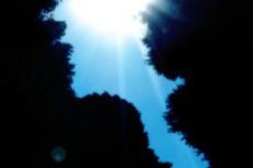 sky156