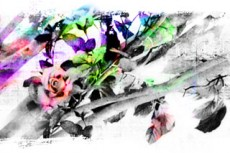 norepeat-flower065_6
