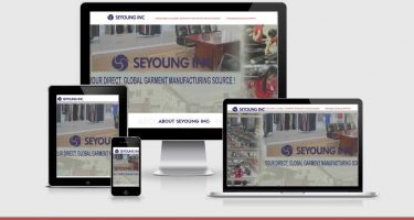 Neo Deisgn Concepts website design development of seyoung-inc-usa-site