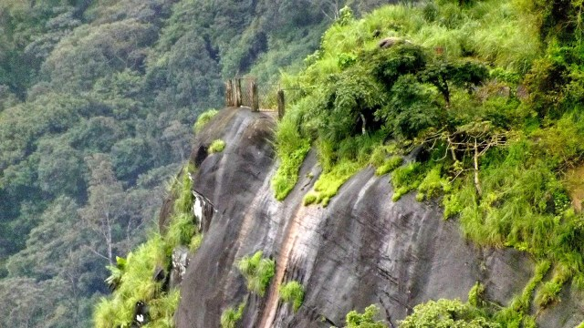 kanjirakolly sasippara neokerala