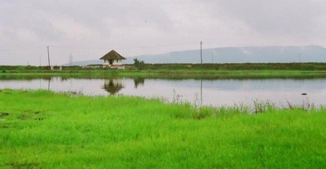 madayipara-guide-vadununnu-temple