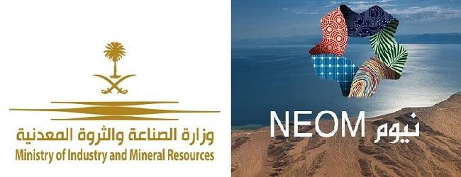 Energy System organizes a joint workshop with NEOM