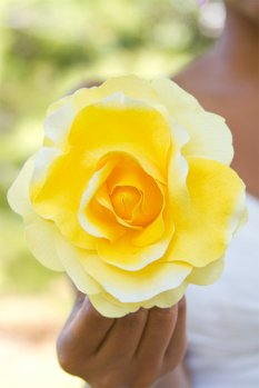 Flowers From Fatima