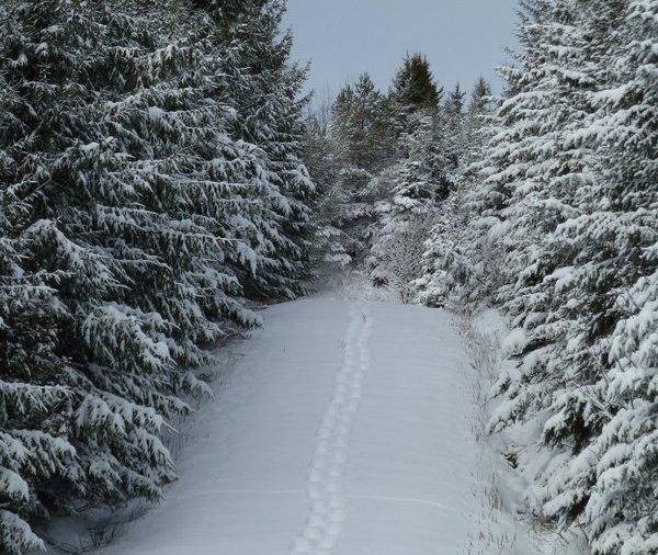 hiver en abititi
