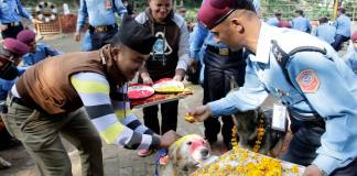 Police personnel worshipping dogs and offering them garland and tika on the occasion of #Kukur dog