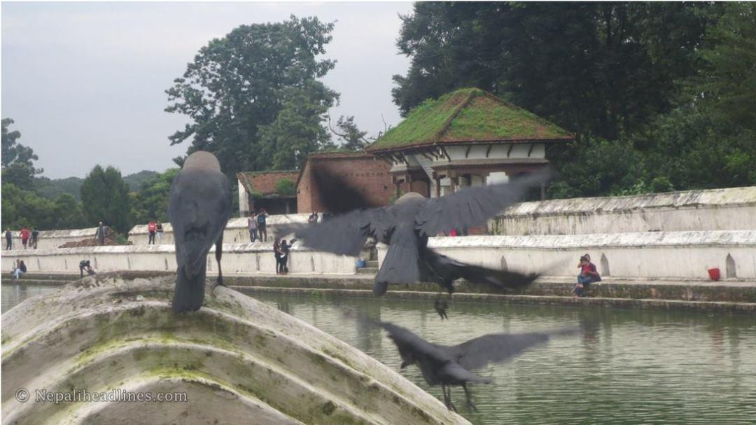 Siddha Pokhari Bhaktapur  (6)