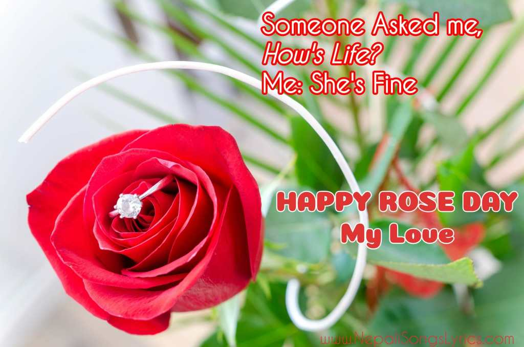 rose quotes for rose day