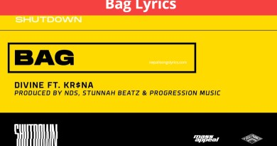 Bag Lyrics _ DIVINE Feat. KRSNA _ SHUTDOWN