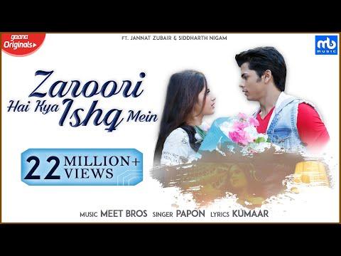 Zaroori Hai Kya Ishq Mein Lyrics - Meet Bros, Papon