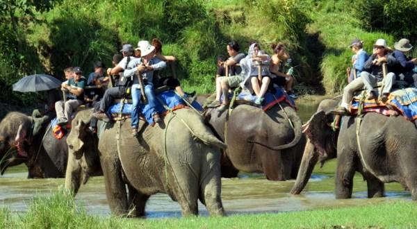 Tourist chitwan