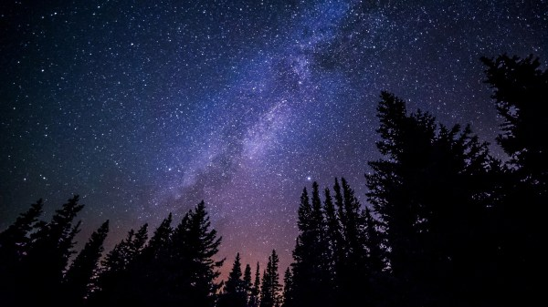 View of milky way through the treetops