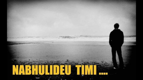 Nabhulideu Timi Lyrics - Bhram (English+नेपाली) | Lyrics, Chords, Tabs, Mp3 | Neplych