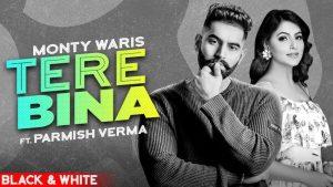 Tere Bina Lyrics – Monty & Waris