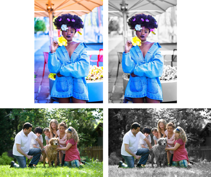 Image colorizer example