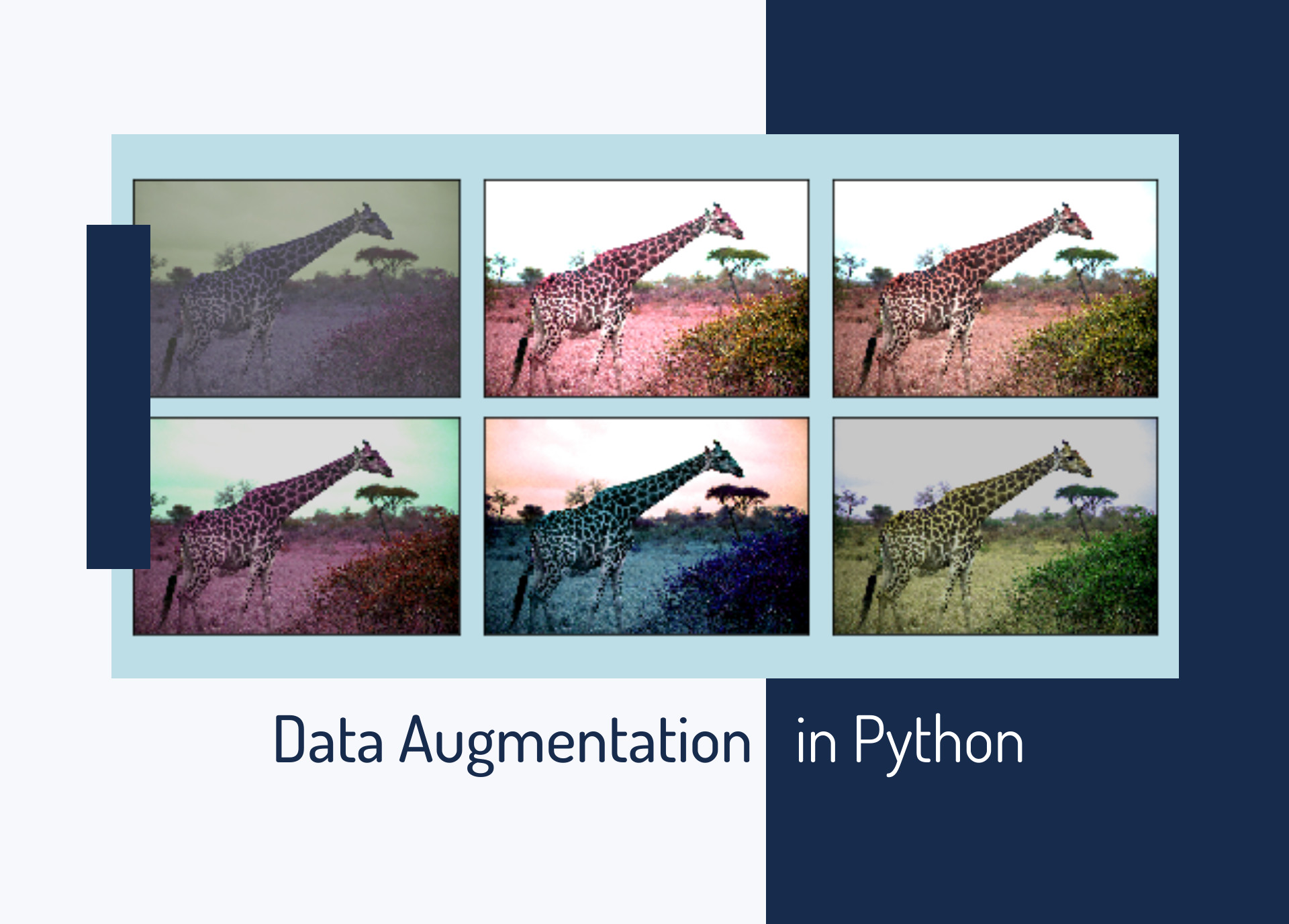 Data Augmentation in Python: Everything You Need to Know