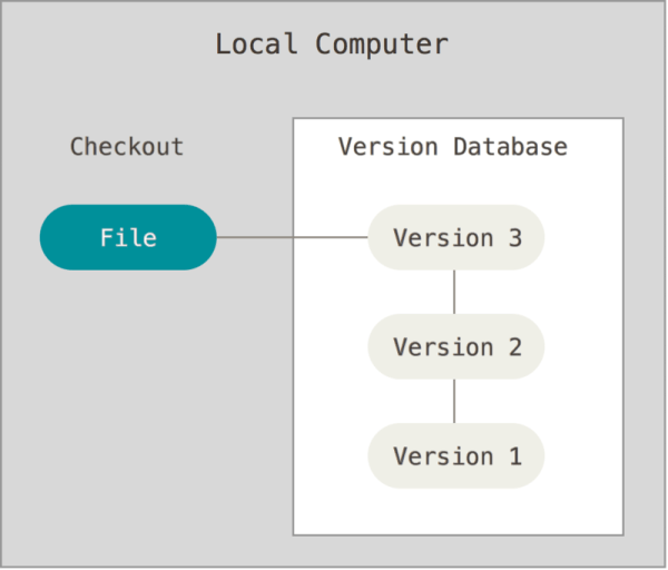Local Version Control System