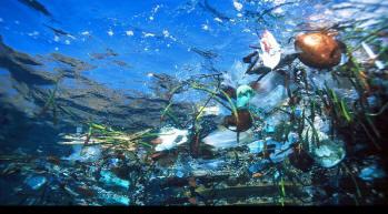 plastic%20ocean%20trash