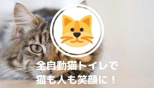 全自動猫トイレを導入して、猫にも人にも快適な毎日を。