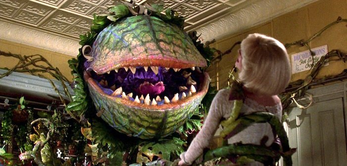 """Out of the Box D&D Encounters, Series 2, #32 """"Don't Feed the…Flowers?"""""""