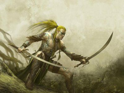 wood elf barbarian