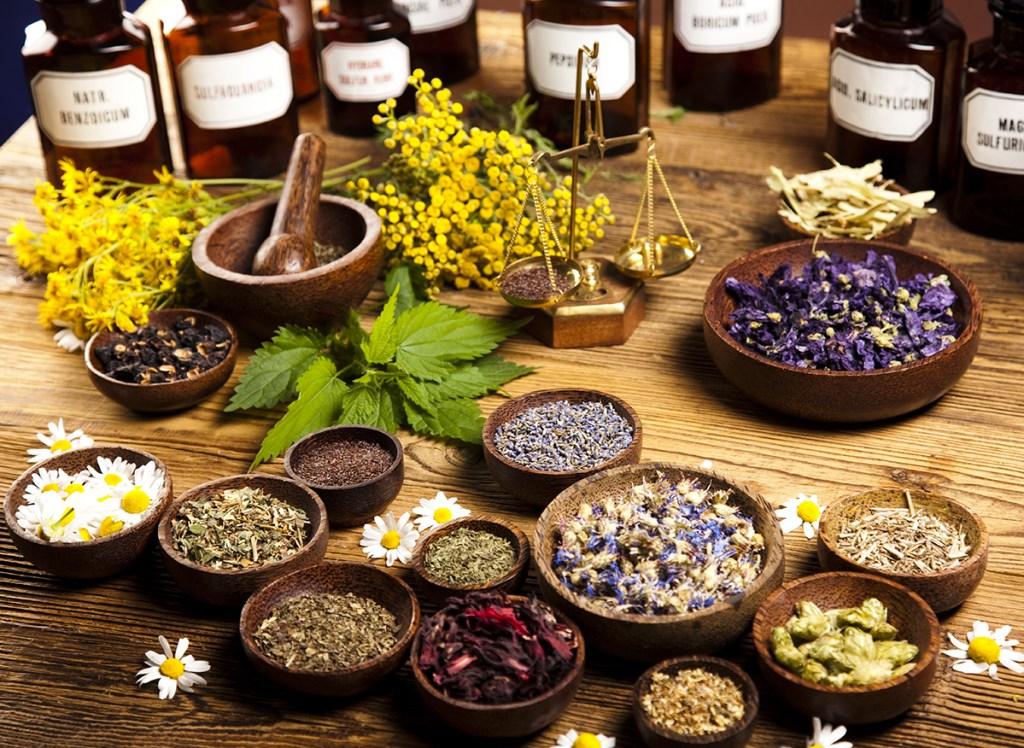 5E D&D herbalism kit tool proficiency