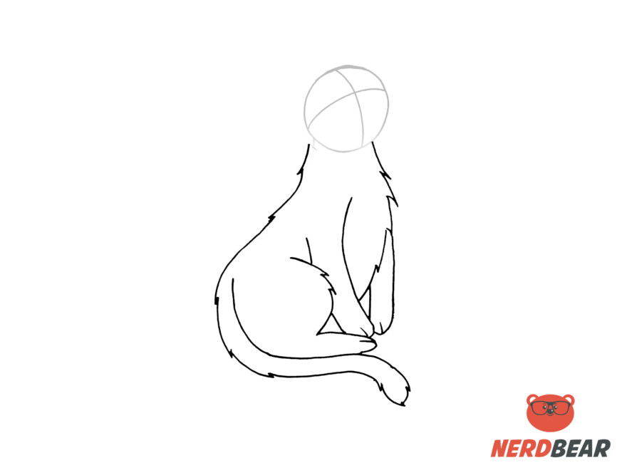 How To Draw A Sitting Anime Cat 6