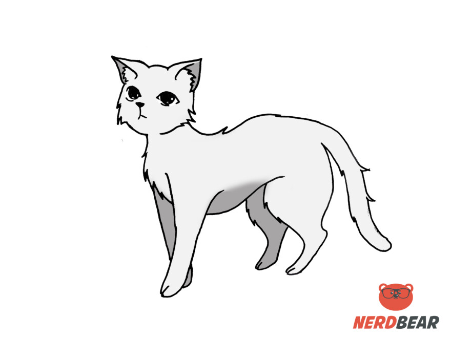 How To Draw A Standing Anime Cat 15