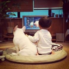 dog_friendship2